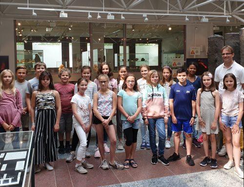 Die 5a besucht das Mineralogische Museum der Universität Würzburg